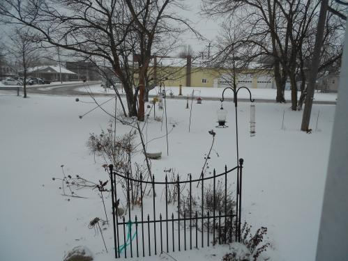 winter interestt